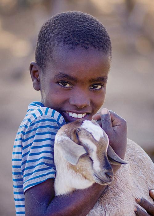 Give a Goat! goat, donate a goat, give a goat, gift, kid goat