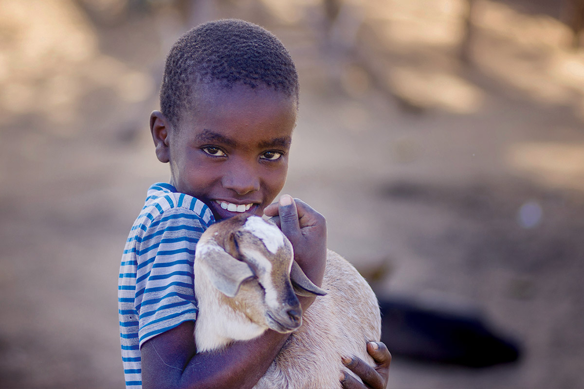 Give a Goat!